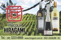 hiragami 11