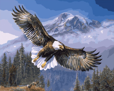 Eagle-Flying-Frameless-Pictures-Painting-By-Numbers-DIY-Digital-Canvas-Oil-Painting-Home-Decor-Wall-Art