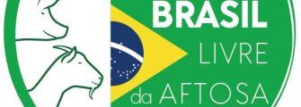 NOSSA CARNE ESTÁ EM ALTA – Brasil recebe certificado/SC comemora, e já tinha status de livre de febre aftosa sem vacinação.