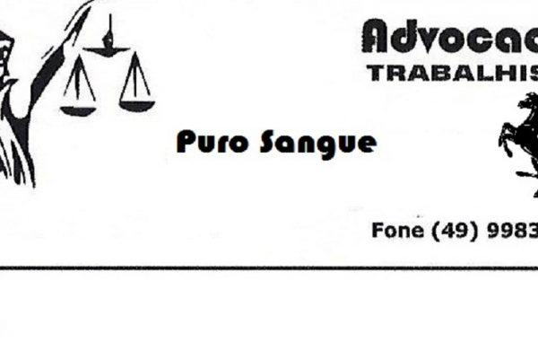 Banner advogado