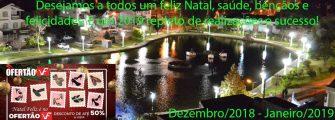 EM TEMPOS DE ESPÍRITO NATALINO, DE RENOVAÇÃO E ESPERANÇA