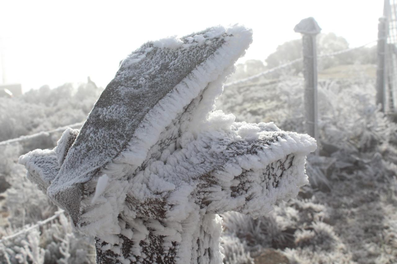 TEMPERATURAS VARIAM ENTRE -1 E – 6ºC NO SUL, COM FORTES GEADAS – Belas imagens! Com jeitinho você pode imaginar um fóssil de dinossauro no gelo.