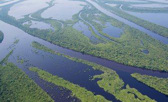 QUANTO VALEM A SOBERANIA DO BRASIL E A DA AMAZÔNIA? – Não serão algumas doações em dólares que irão comprar nossa autodeterminação ambiental.
