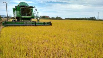 MUNDO DEVE COMPRAR TUDO O QUE SOBRAR DE NOSSO AGRONEGÓCIO – Setor é cada vez mais estratégico; mais uma razão para produção sustentável que proteja o meio ambiente