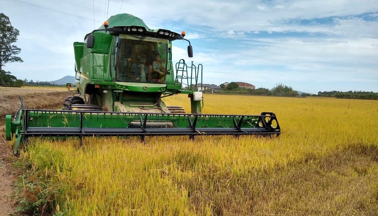 EXPORTAÇÕES DE ALIMENTOS TEM MAIOR SUPERAVIT DA HISTÓRIA – Campo não para e colhe a supersafra de grãos. Produção de proteína animal também vai a todo vapor.
