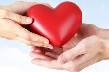 DOAÇÃO DE ÓRGÃOS, UM EXERCÍCIO DE SOLIDARIEDADE: salva uma vida e prolonga a existência de parte de alguém que perdemos.